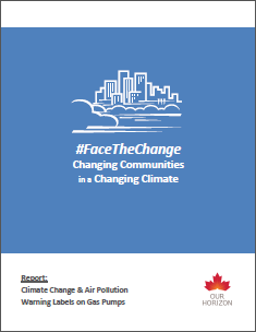 Face The Change Report Thumbnail